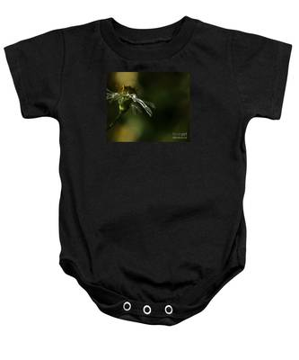 Aster's Peripheral Ray Baby Onesie