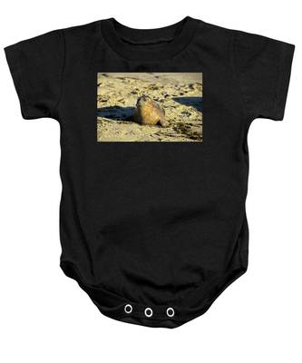 Baby Seal In Sand Baby Onesie