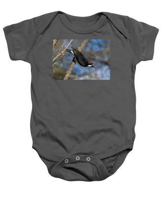 Acorn Woodpecker Baby Onesie