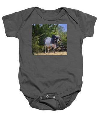 Brahma Cow Baby Onesie