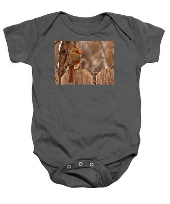Female Cardinal On The Fence Baby Onesie