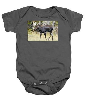 Moose On The Move Baby Onesie
