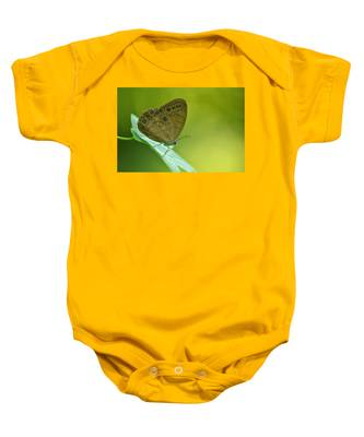 Appalachian Brown Baby Onesie