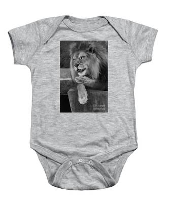 My Butt Blew You a Kiss Onesie Iron on
