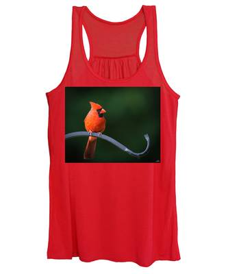 Male Cardinal At The Feeder Women's Tank Top
