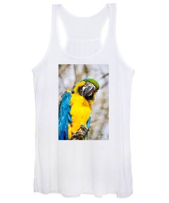 Blue And Gold Macaw Parrot Women's Tank Top