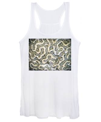 Fossilized Brain Coral Women's Tank Top
