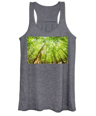 cypress forest and swamp of Congaree National Park in South Caro Women's Tank Top