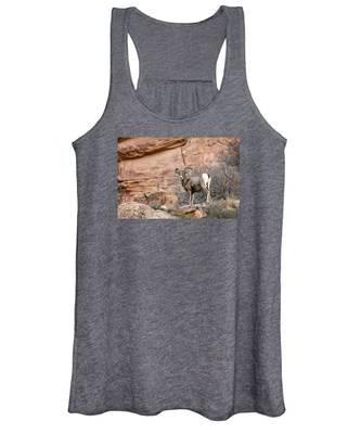 Desert Bighorn Women's Tank Top
