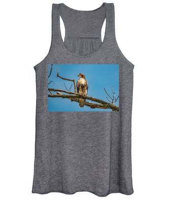 Red Tail Hawk Perched Women's Tank Top