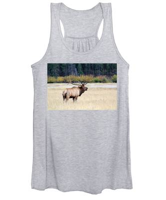 Big Colorado Bull Women's Tank Top