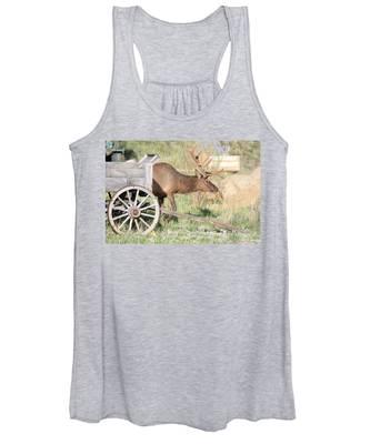Elk Drawn Carriage Women's Tank Top