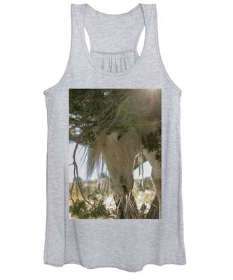 Old Man And The Juniper Women's Tank Top