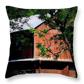 October Hill Throw Pillow