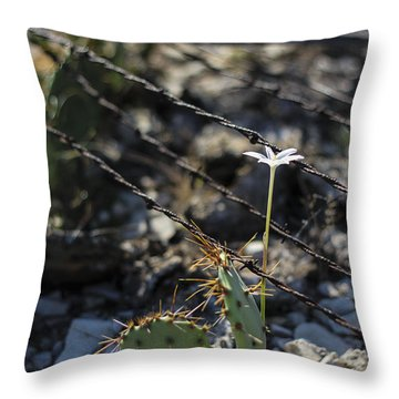 Throw Pillow featuring the photograph  A Flower Among Thorns by Amber Kresge