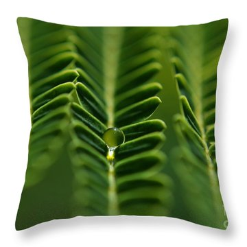 Throw Pillow featuring the photograph  A Green Drop by Michelle Meenawong