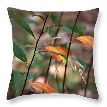 Throw Pillow featuring the photograph  A Little Fall by Yumi Johnson