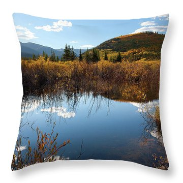 A Reflection Of Fall Throw Pillow by Jim Garrison