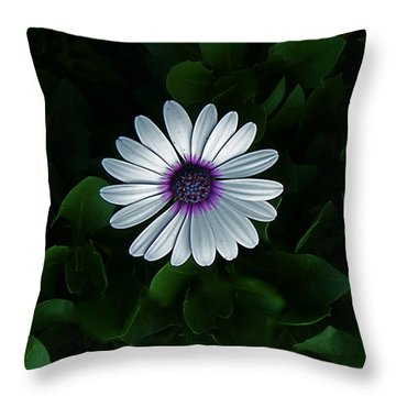 One Single Flower Throw Pillow by Rita Mueller