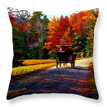 Acadia National Park Carriage Trail Fall  Throw Pillow