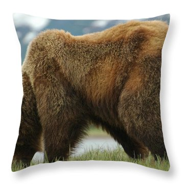 Alaska Grizzly Throw Pillow