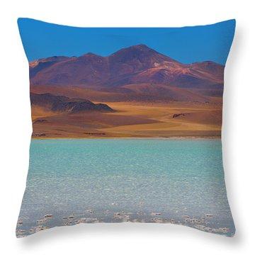 Atacama Salt Lake Throw Pillow