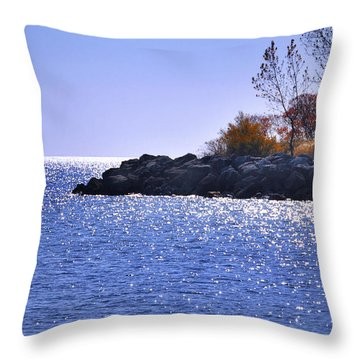 Throw Pillow featuring the photograph  Autumn Sparkle by Elaine Manley