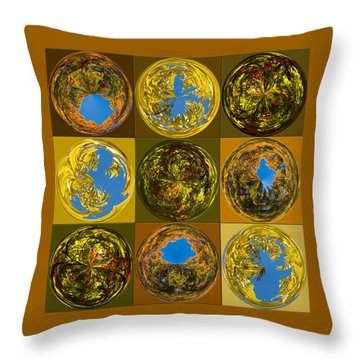 Throw Pillow featuring the photograph  Autumn  Spheres by Denise Beverly