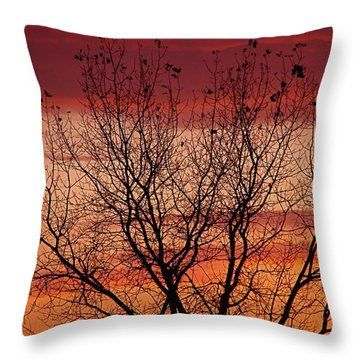 Autumn Sunset Throw Pillow by Rita Mueller