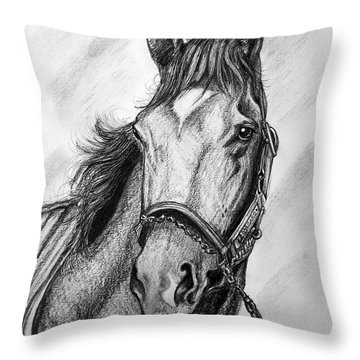 Barbaro Throw Pillow by Patrice Torrillo