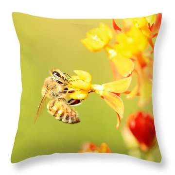 Throw Pillow featuring the photograph  Bee On Milkweed by Greg Allore