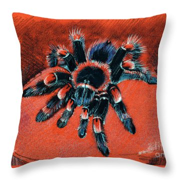 Brachypelma Smithi Redknee Tarantula  Throw Pillow
