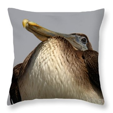 Throw Pillow featuring the photograph  Brown Pelican  by Bob and Jan Shriner