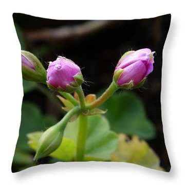 Bud Quartette   Throw Pillow