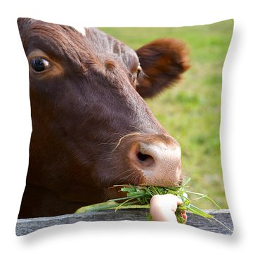 Childs Helping Hand Throw Pillow