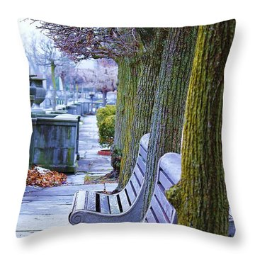 Throw Pillow featuring the photograph  Colours In The Park by Al Fritz