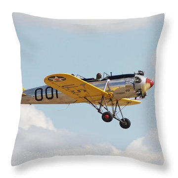 Come Fly With Me Throw Pillow by Pat Speirs