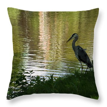 Throw Pillow featuring the photograph Contemplating Impressionist Paintings by Georgia Mizuleva