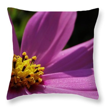 Cosmos Pink Angel  Throw Pillow
