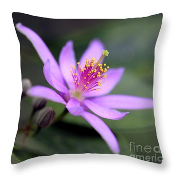Crossberry / Grewia Throw Pillow