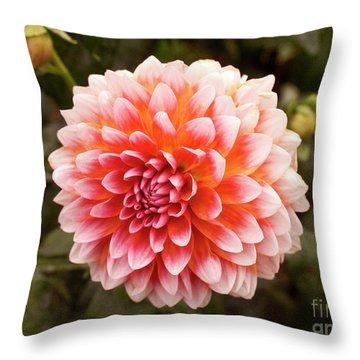 Dahlia 1 Throw Pillow