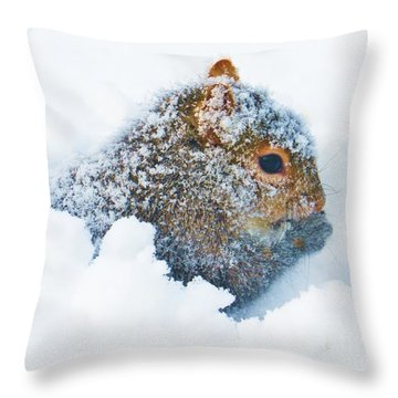 Deep Snow Squirrel Throw Pillow