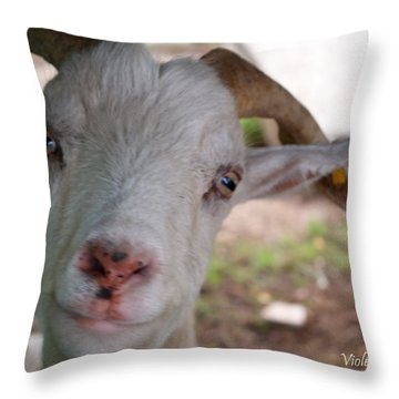 Do You Like Me? Throw Pillow
