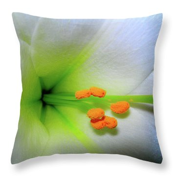 Easter A New Beginning  Throw Pillow