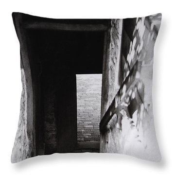 Throw Pillow featuring the photograph  Ephrata Cloisters Stairway by Jacqueline M Lewis