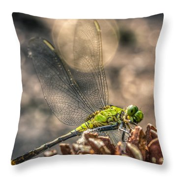 Throw Pillow featuring the photograph  Erythemis Simplicicollis by Rob Sellers