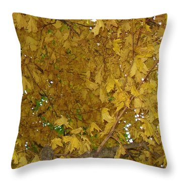 Fall Amur Maple  Throw Pillow