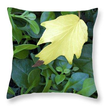 Fallen Yellow Leaf Throw Pillow