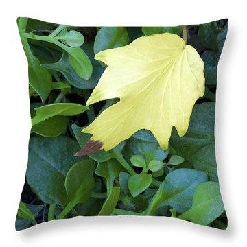 Fallen Yellow Leaf Throw Pillow