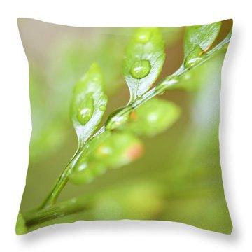 Fern Fronds Throw Pillow